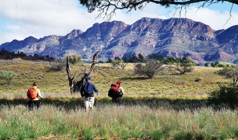 The Flinders Ranges are raw, rugged and untamed.