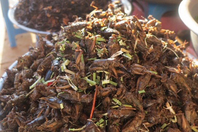 Crunchy crickets and tarantula, Cambodia.