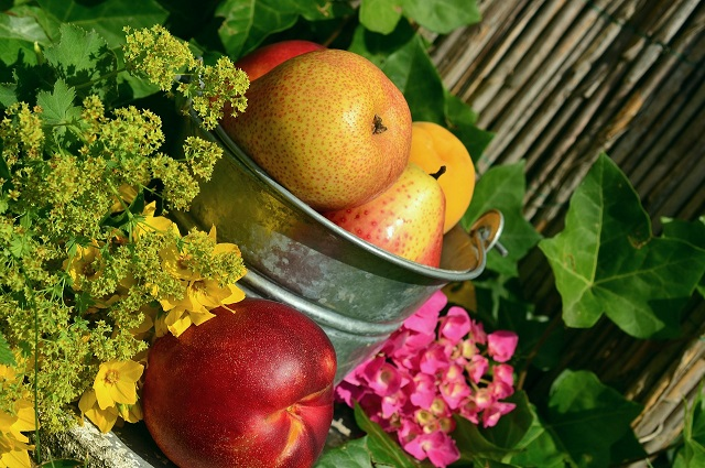 Bountiful organic fruit bucket