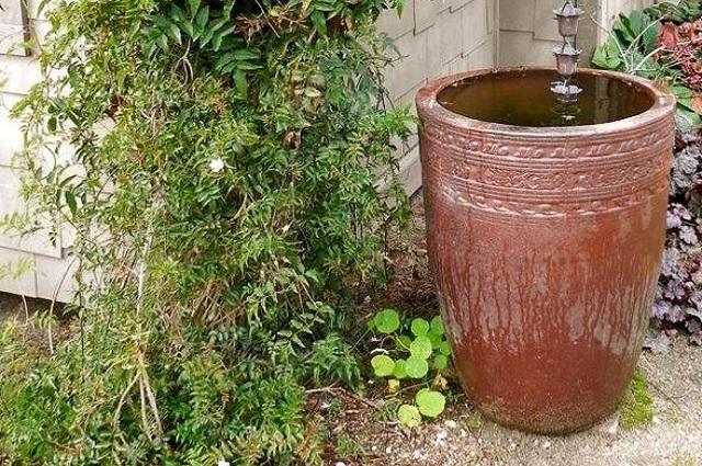 Rainwater jug